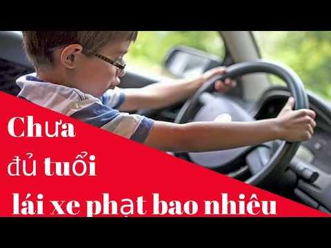 Chưa đủ tuổi lái xe phạt bao nhiêu/Phổ Biến Pháp Luật