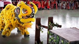 Ampang Fishing Club Lion Dance - 8.53 (Second Place)