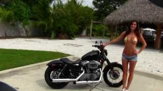 10. Used Harley Davidson Motorcycles for Sale in Texas Florida