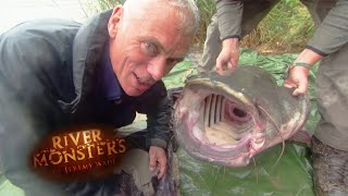 Catching An Even Bigger Wels Catfish - River Monsters