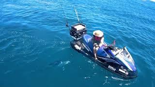 10. fishski marlin slow mo
