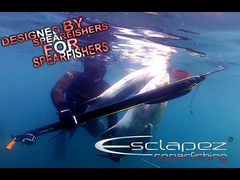Chasse sous marine, doublé de liche amie à Antibes mai 2013 Spearfishing