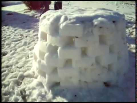 mortarlover123 - Cool Igloo me and my brother built.
