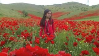 شعر ایران زمین - فارسی