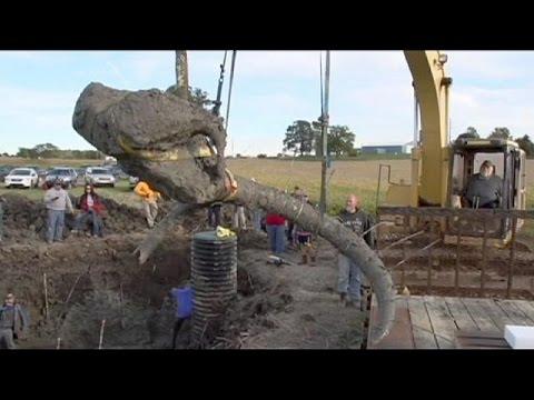 ΗΠΑ: Δύο αγρότες ξέθαψαν οστά προϊστορικού μαμούθ
