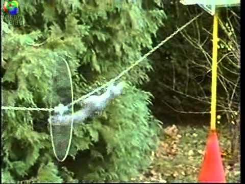 Επικίνδυνες αποστολές με πρωταγωνιστή έναν... σκίουρο!