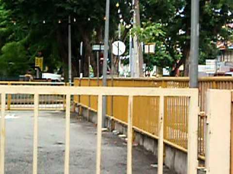 Squarrel  of Georgetown Penang PgIs20110812 Squarrel  .MOV