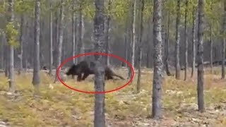 Top 10 Most Scary & Unexplained Videos Ever Recorded - Mysterious Unidentified Footage
