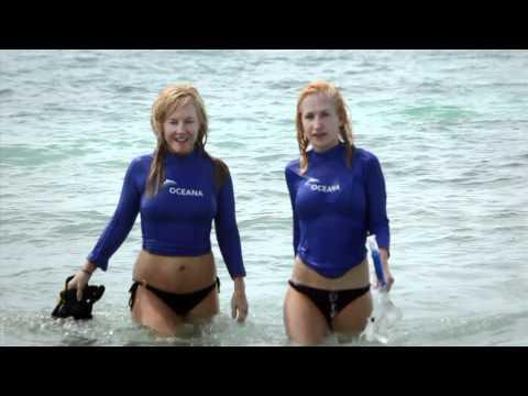 Rachael Harris and Angela Kinsey: Save the Sea Turtles