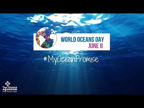 Ngày Đại dương Thế giới 2016: Lời hứa với đại dương