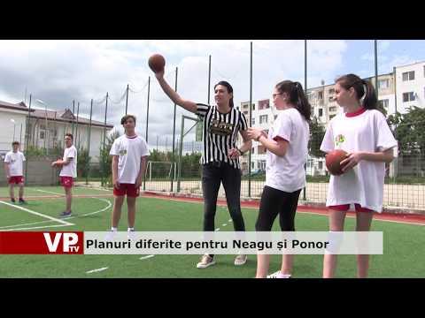 Planuri diferite pentru Neagu și Ponor
