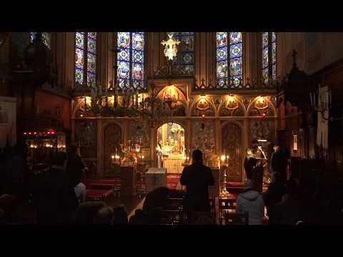 DIRECT Catedrala Paris, 1 decembrie 2019