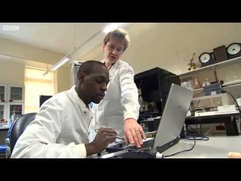 BBC News Tinnitus Research Report – 2012
