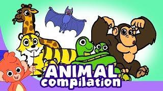 Video Learn Animals for Kids   Zoo Animal Cartoon Compilation for Children    Safari Cartoon Cartoons MP3, 3GP, MP4, WEBM, AVI, FLV September 2018