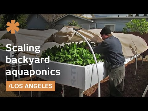 Backyard Aquaponics as Self-Sustained Farm in Suburban LA