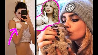 13 Celebrities Who Have the Cutest Pet Bunnies! by Lennon The Bunny