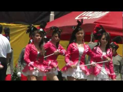 Palillonas de Honduras 2011
