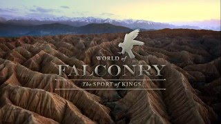 WORLD OF FALCONRY 480P