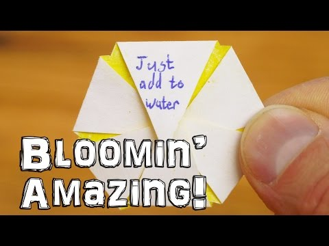 How to Make Blooming Paper Flowers That Open When You Add Them to