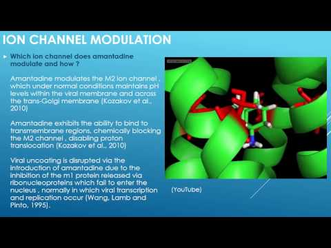 Amantadine - Ion Channel Modulation