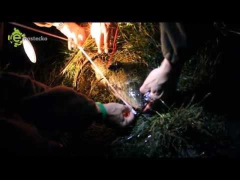Zátah u Horního Jiřetína: Rybáři tam zkoušeli nepovolený noční l