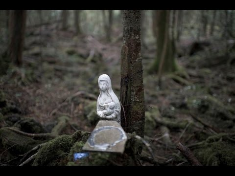 SUICIDE Forest Japan Ghosts Real Paranormal Scary HAUNTINGS