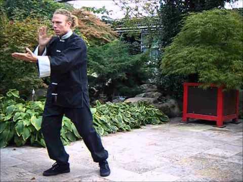 4Seasons Taichi form (видео)