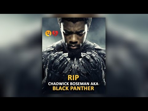 💔🙅‍♂️😢#rip Grand/tribute/to/black.panther & wankada 4ever🔥🔥