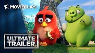 The Angry Birds Movie Ultimate Storybook Trailer (2016) HD by  Movieclips Trailers