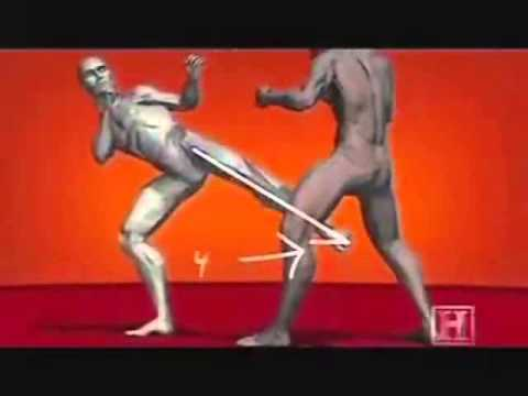 HUMAN WEAPON KARATE TECHNIQUES.wmv