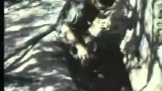 HQ Những điều Chưa Biết Về Chiến Tranh Việt Nam Phần 2   Vietnam S Unseen War