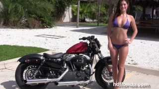 3. New 2013 Harley Davidson 1200 Sportster 48 Forty-Eight Motorcycles for sale