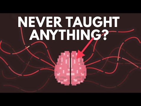 How a Person  s Brain Would Develop If They Were Never Taught