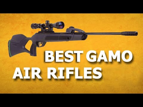 Best Gamo Air Rifle 2020 - 5 Best Pellet Rifle for Hunting