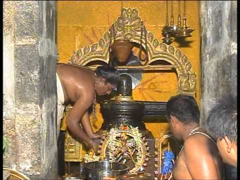 SRI NATARAJA SWAMY PRATHISTAI 2012 PART4