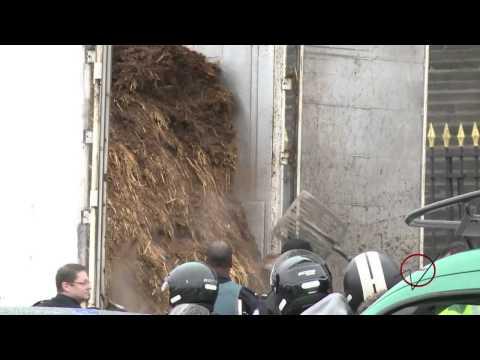 parlamento francese sepolto dal letame di cavallo!