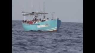 Черное море Большой Утриш Морская рыбалка