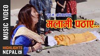 Malami Pathaye - / Nabin Birahi Shrestha, Muna Thapa Magar