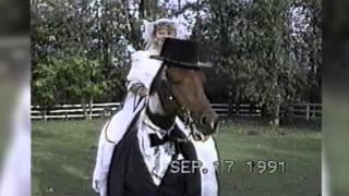 faze tari faza tare mireasa pe cal