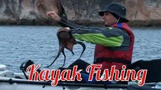 Video Pesca Setubal_ Kayak fishing.mpg MP3, 3GP, MP4, WEBM, AVI, FLV Desember 2017