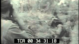 Vietcong Snipers Ambush U.S. Soldiers