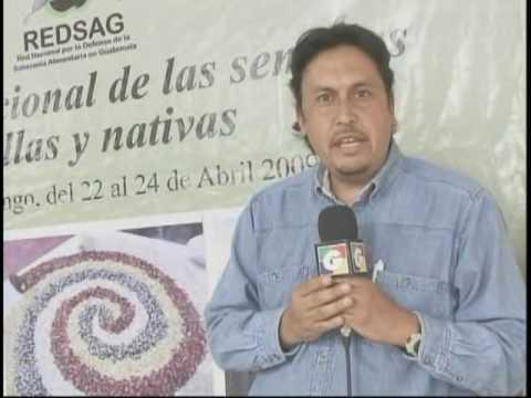 Reportaje Guatevisión -5ta feria de Semilla Criolla en Quiche- Soberanía Alimentaria