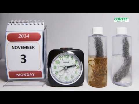 Steel Wool Corrosion Timelapse by Cortec