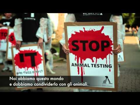 ilana-yahav-contro-la-sperimentazione-sugli-animali-336
