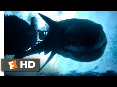 The Shallows (10/10) Movie CLIP - Impaled (2016) HD