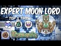 Terraria Expert Moon Lord Top 5 Tips | Melee | Ranged | Mage | Summoner Strategy