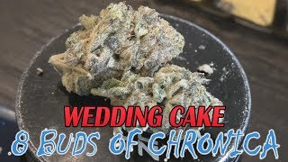 8 Buds of Chronica: Wedding Cake by Urban Grower