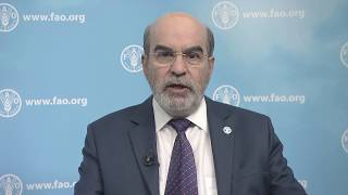 FAO Director-General's message for World Oceans Day 2017
