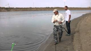 Ловля 20 кг сома. река Урал. Казахстан.
