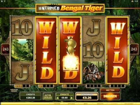 Untamed Bengal Tiger Slot   Super Mega Win 3 Extented Wilds